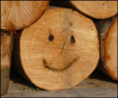 baumstamm smiley brennholzfeuchte blog. Black Bedroom Furniture Sets. Home Design Ideas